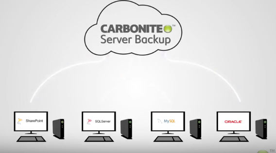 carbonite server backup coupon